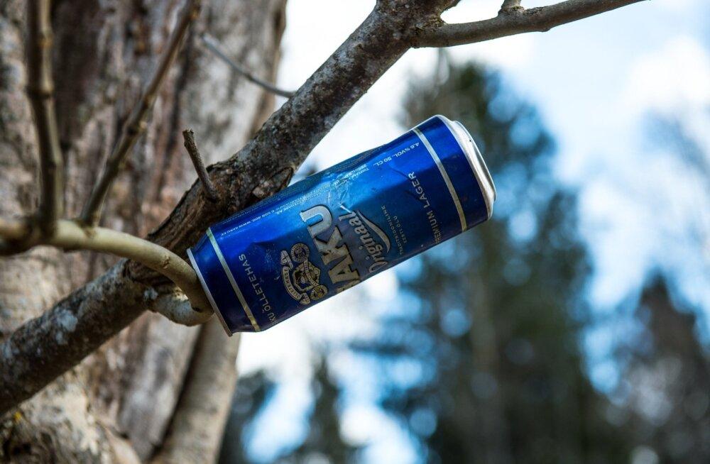 Kui kohtad metsa all marjulist, soovitavad kogenumad karud tõusta tagajalgadele ning möriseda.