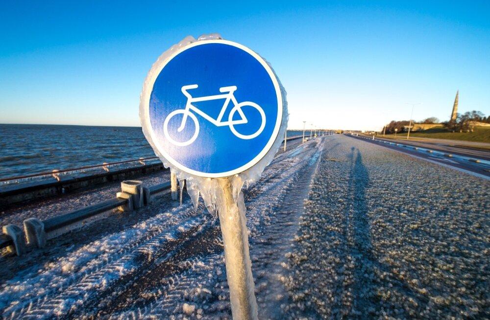 Bloomberg: Европа вынуждена закупать у России рекордные объемы газа из-за сильных морозов