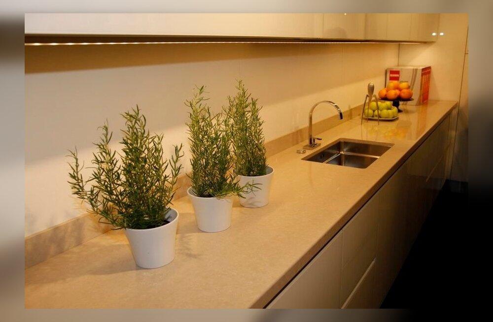 Köögimööbel. Foto on illustratiivne