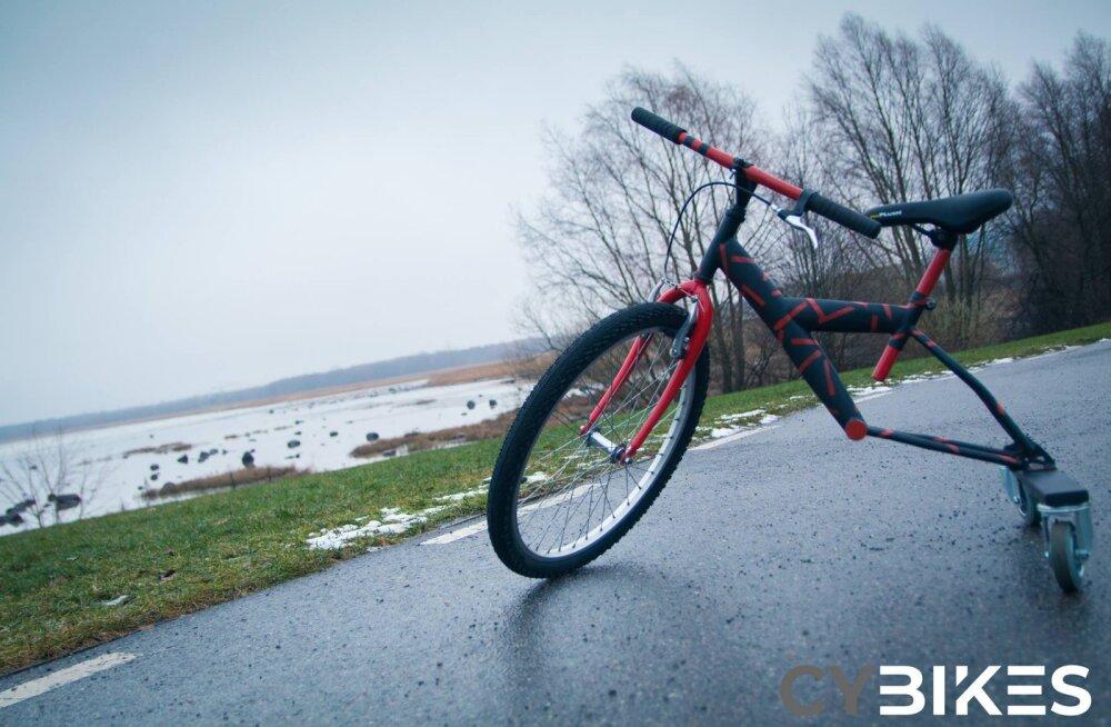 Кто хочет велосипед-самокат? В крупнейшей ярмарке ученических фирм года примут участие 278 молодежных предприятий