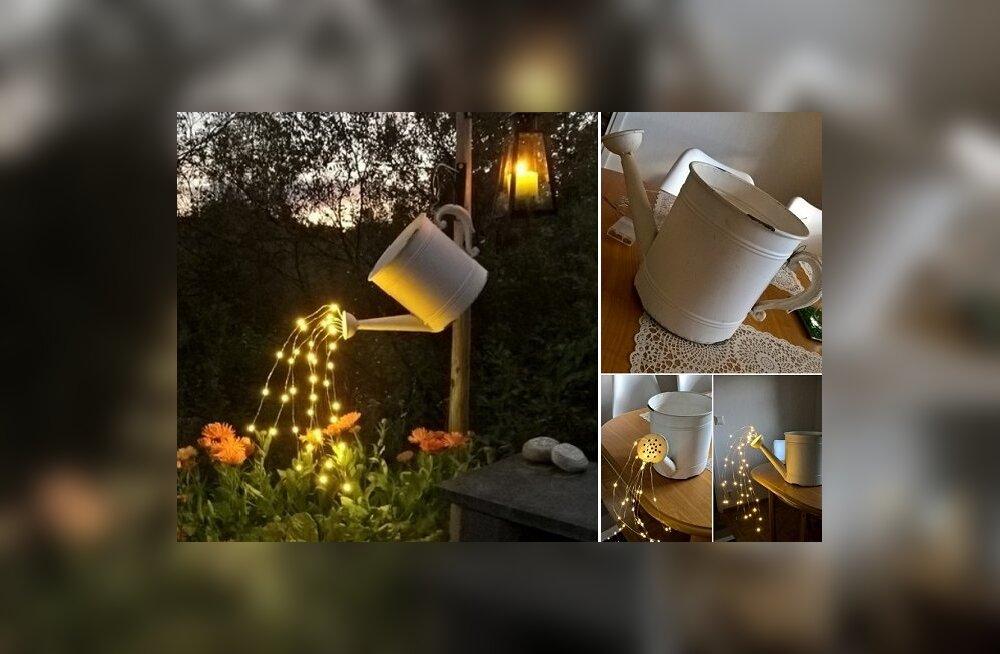 TEE ISE: Vanast kastekannust saab uhke aiakaunistuse - haldjatuled öös