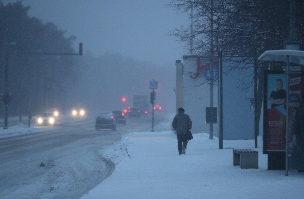 Heitlik veebruar: alanud kuu toob nii külmi päevi kui sulailma, aga ka lund ja tugevaid tuuli