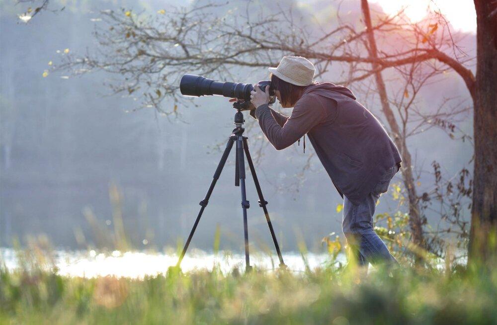 Originaalsed FOTOD | Ülemaailmsele fotokonkursile esitatud tööd rabavad jalust iga loomahuvilise