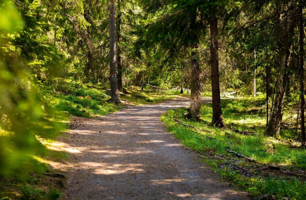 TOP 5 puhkekeskused Eestis | Kuhu tasub sõita pidama seminari või uhket pulmapidu