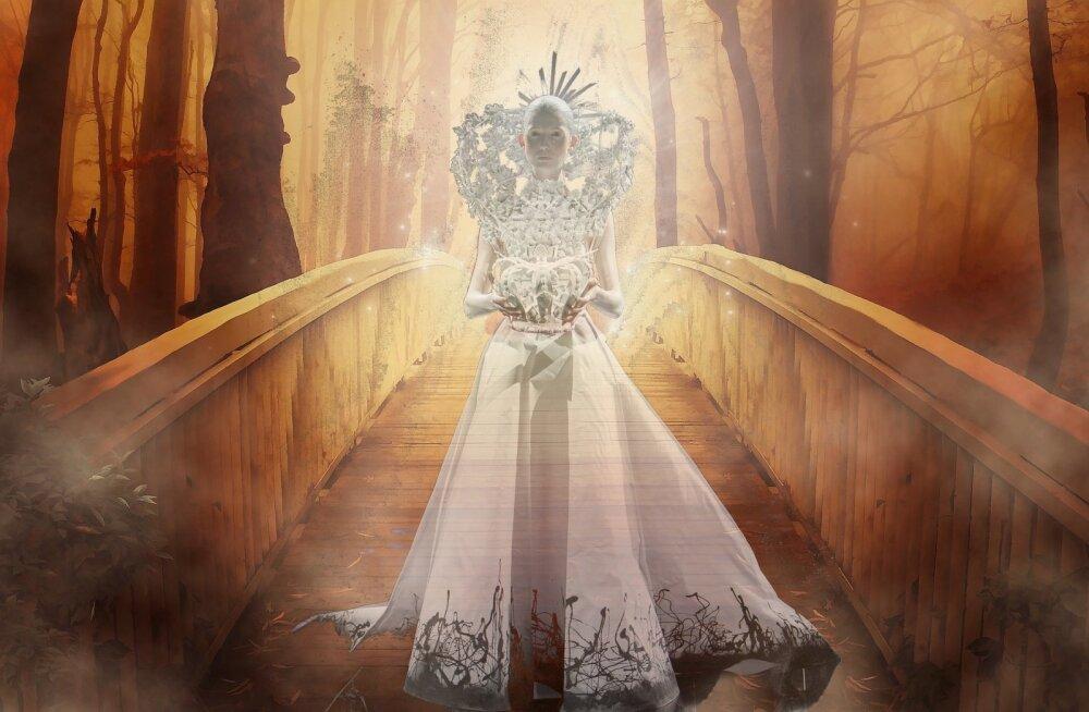 Kangelase teekond: valitseja arhetüüp loob küllust