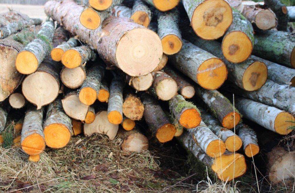 2016. aastal eksporditi kokku 1,91 miljardi euro väärtuses puidupõhiseid tooteid.