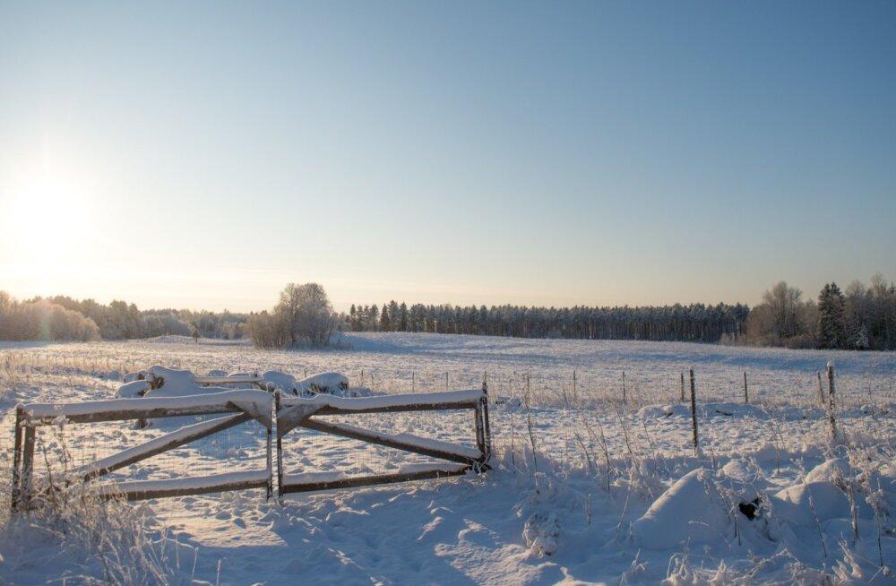 Talv Miila külas