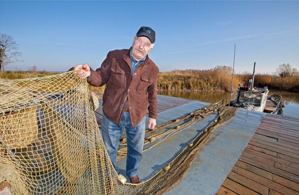 Võrtsjärve kaluri Leo Aasa sõnul võis tänavu kuumal ajal mõrdadest leida palju surnud angerjaid.