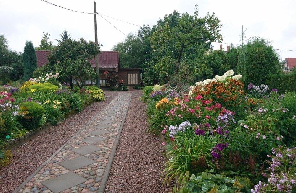 Juri Markovski aed