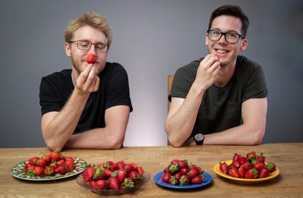 Maasikatest toimetuses