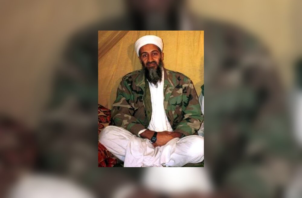 osama bin laden and al qaeda essay Ideology and objectives of osama bin laden and al-qaeda nowadays, every part has been stimulated and affected by various acts of violence and terrorism around the globe a number of revolutionary movements are being advanced at a very faster rate.