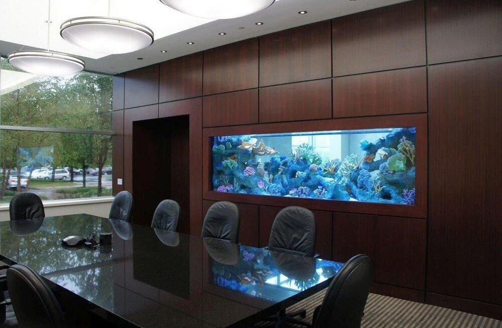 Kuidas mõjutab akvaarium kontorikeskkonda?