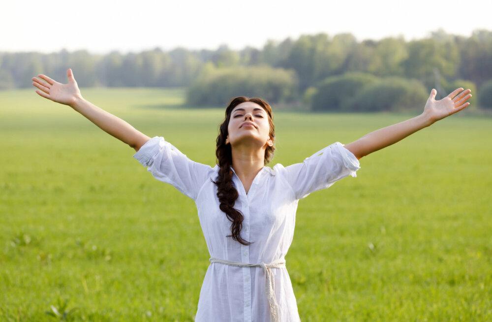 Kuidas leida jõudu, et viia ellu kõik oma unistused?