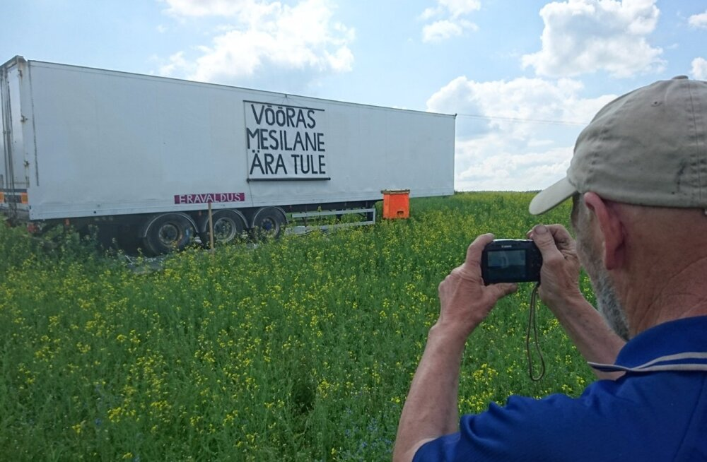 OOTAMATU SILT: Põlvamaa põllumees Martin Tõrra kaitseb oma õitsvat rapsipõldu võõraste mesilaste ja alusetute trahvinõuete eest.