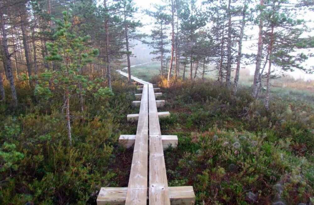 Leili Mihkelson: loodusrajad on parim, mis RMK rahva heaks teinud on