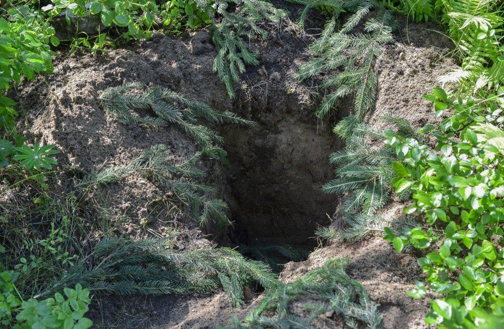 """Venemaa püüab Karjalas välja kaevata """"soomlaste massiliselt tapetud sõjavange"""""""