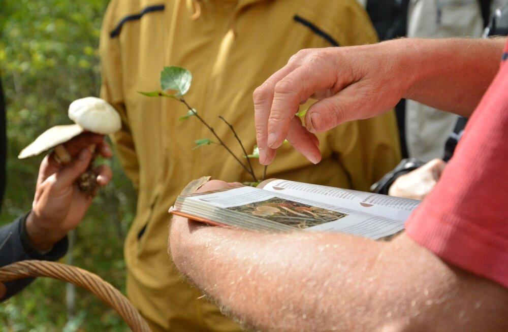 Maalehe seeneretk 2016 Põhja-Kõrvemaale