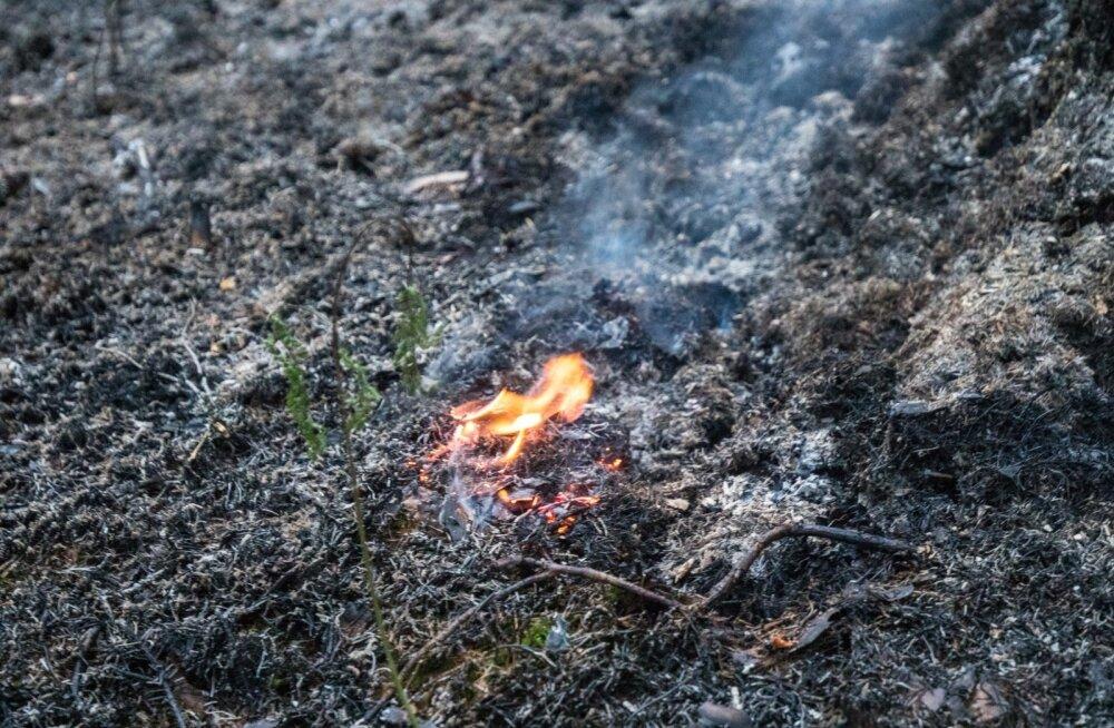 Aitsra tulekahju