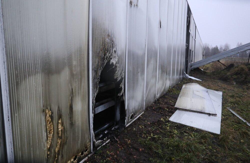 Päästjate töine aastavahetus: 56 tulekahjut, ilutulestiku raketiga sai näovigastusi 12-aastane poiss
