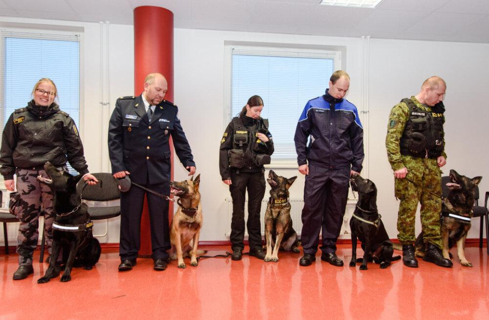 Eesti parimad koerajuhid ja teenistuskoerad pälvisid tunnustuse