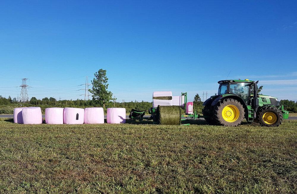 Tänavu on põldudel moes roosad silopallid