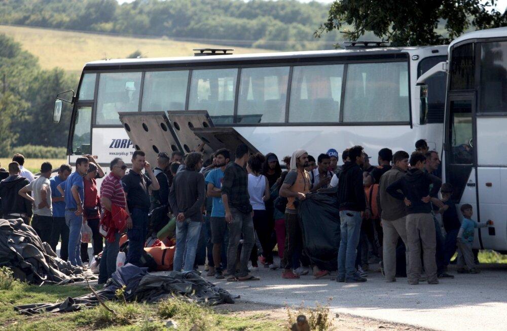Observer: Kreeka põgenikelaagrites ahistati seksuaalselt eekooliealisi lapsi