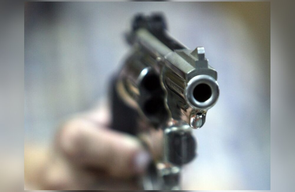 Koerale pähe tulistanud mees mõisteti vangi