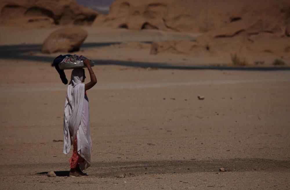 Mangopuud, koolivihikud ja kaevud: miks tasub arengukoostöös naistele panustada?