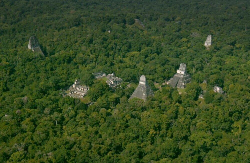 Ученые обнаружили в джунглях Гватемалы десятки ранее неизвестных городов цивилизации майя