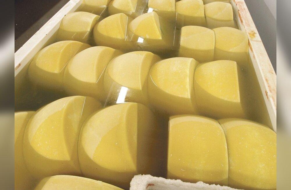 Kuidas valmib juust