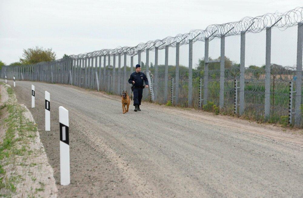 Politseinik Serbia-Ungari piiril patrullimas. Ungari ei taha riiki pagulasi ega salli enam ka nende aitajaid.