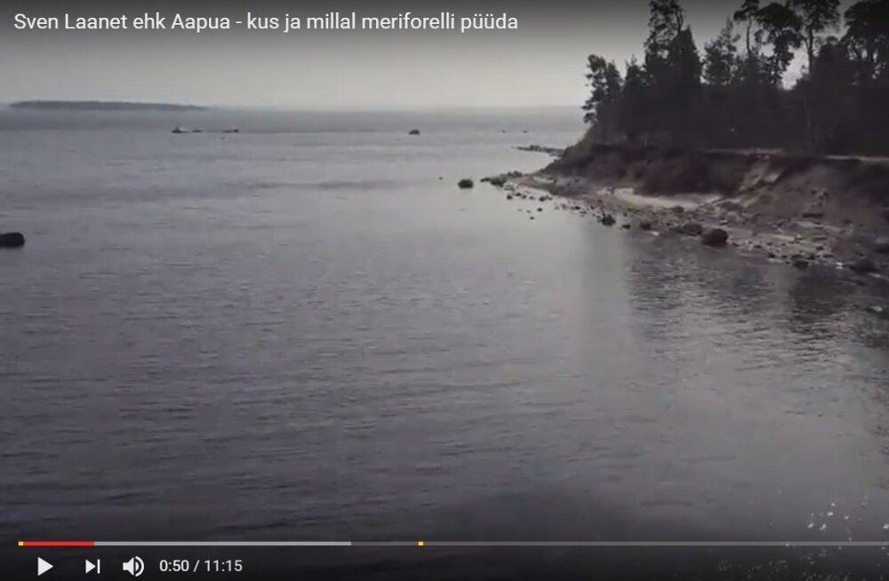 VIDEO: Landimeister Sven Laanet ehk Aapua räägib, kus ja kuidas meriforelli püüda
