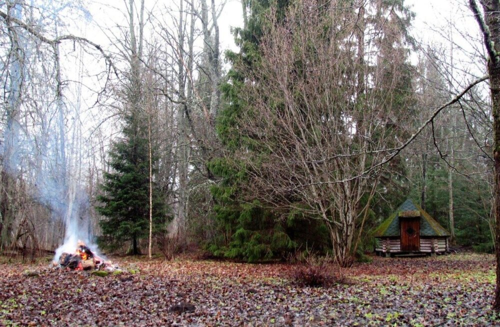 Leili metsalood | Tuletegemise päev