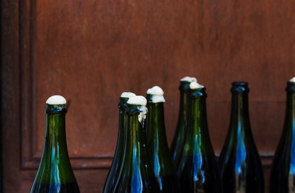 Hobipruulijate koduveini- ja siidri konkursile laekub järjest rohkem jooke