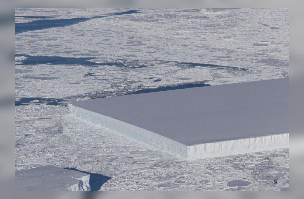 """Какой-то ужасный гул: ученые записали """"страшные"""" звуки Антарктиды"""