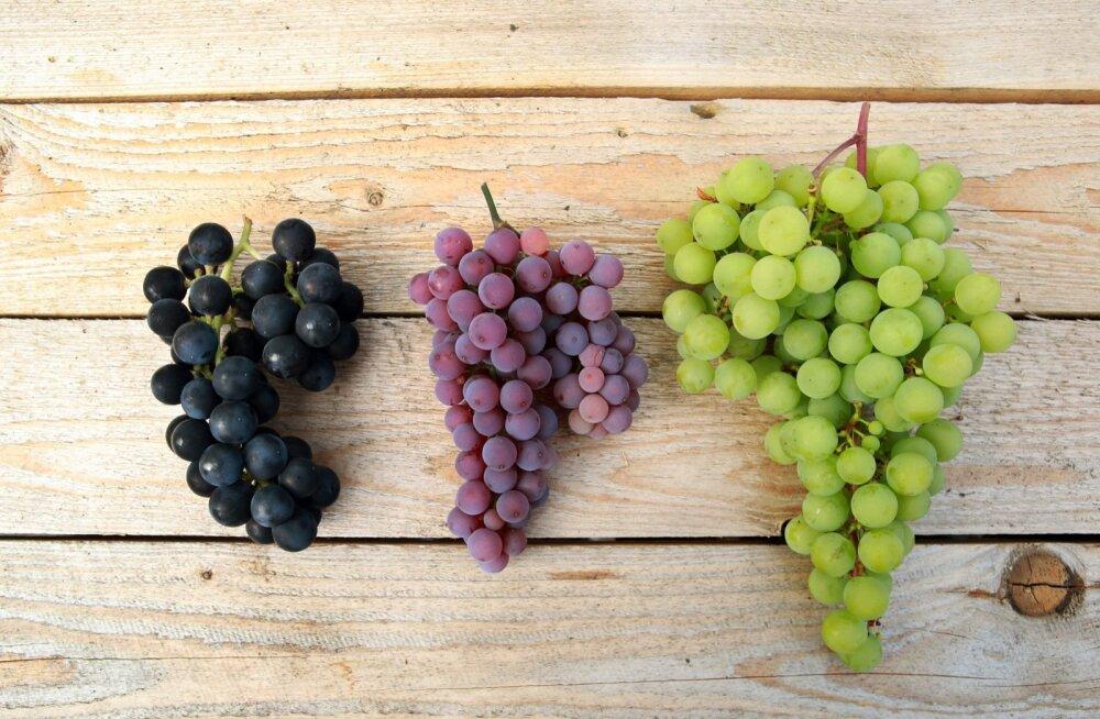 3,8 protsenti Euroopas tarbitavatest toiduainetest sisaldab pestitsiidide jääke üle piirnormi