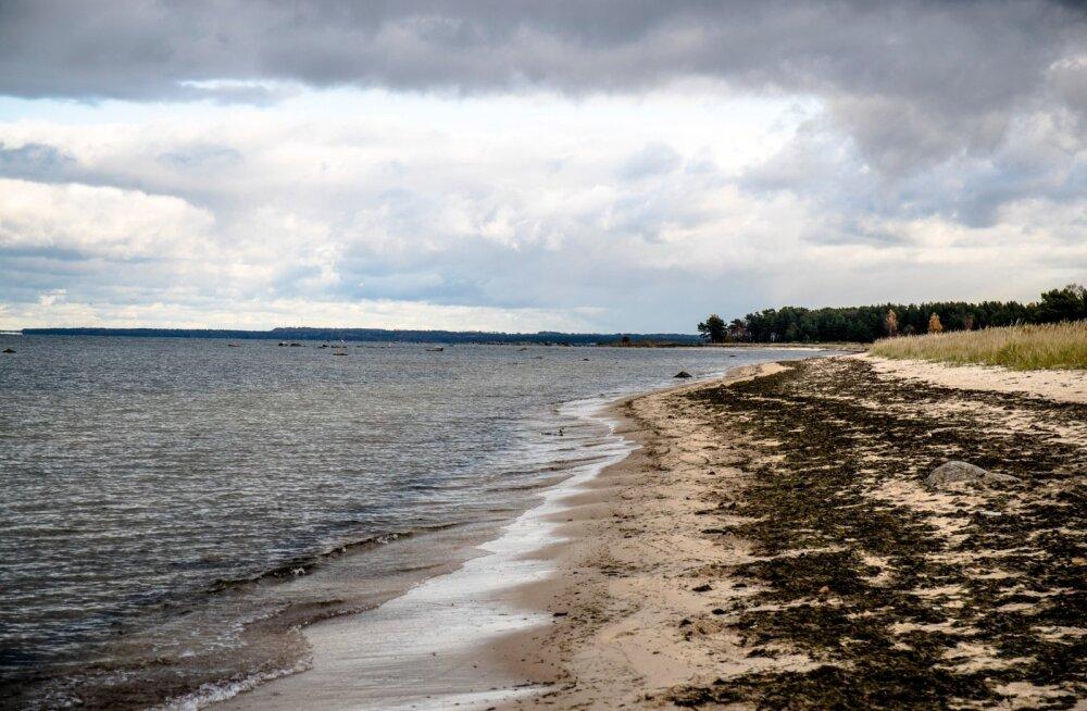 Lohusalu rannas