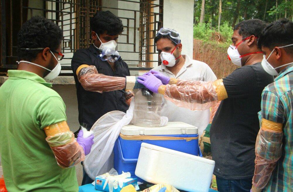 Haruldane ravimatu Nipah` viirus on Indias tapnud kümme inimest, kaks on kriitilises seisus