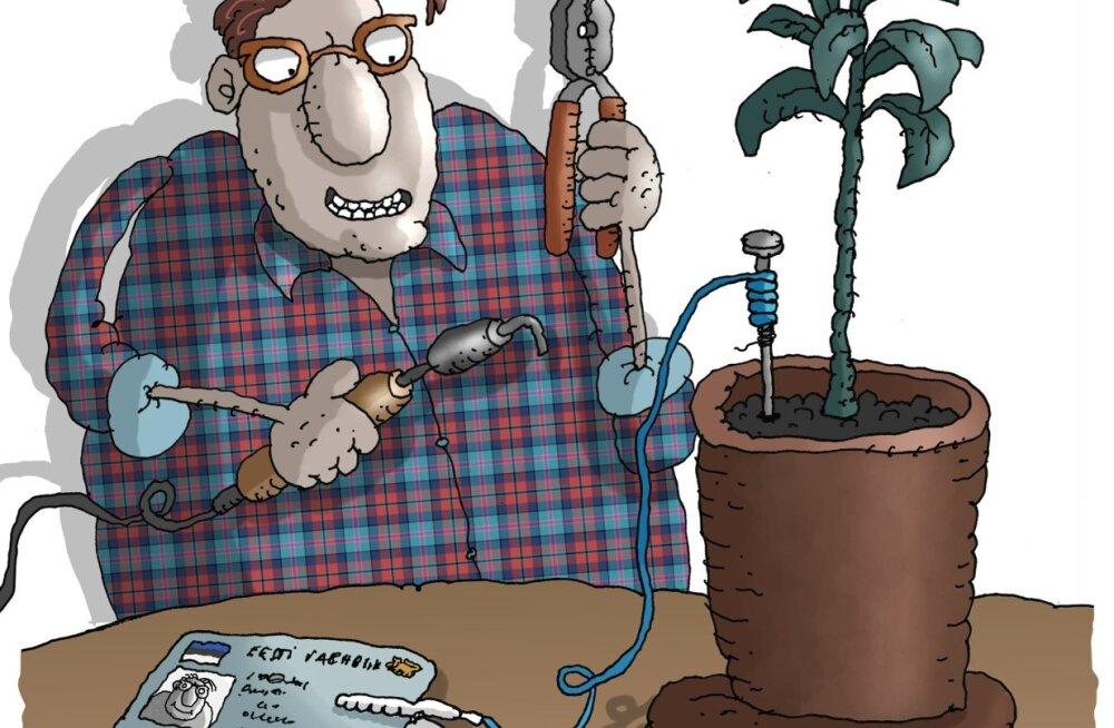 Karikatuur. Digitehnoloogiaga seotud riskide maandamine kodusel teel