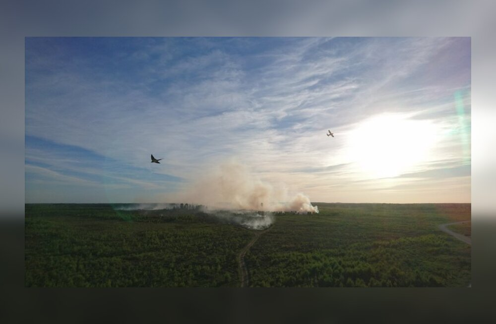 ФОТО: Горит полигон Сил обороны. Его тушат с самолета и с вертолета