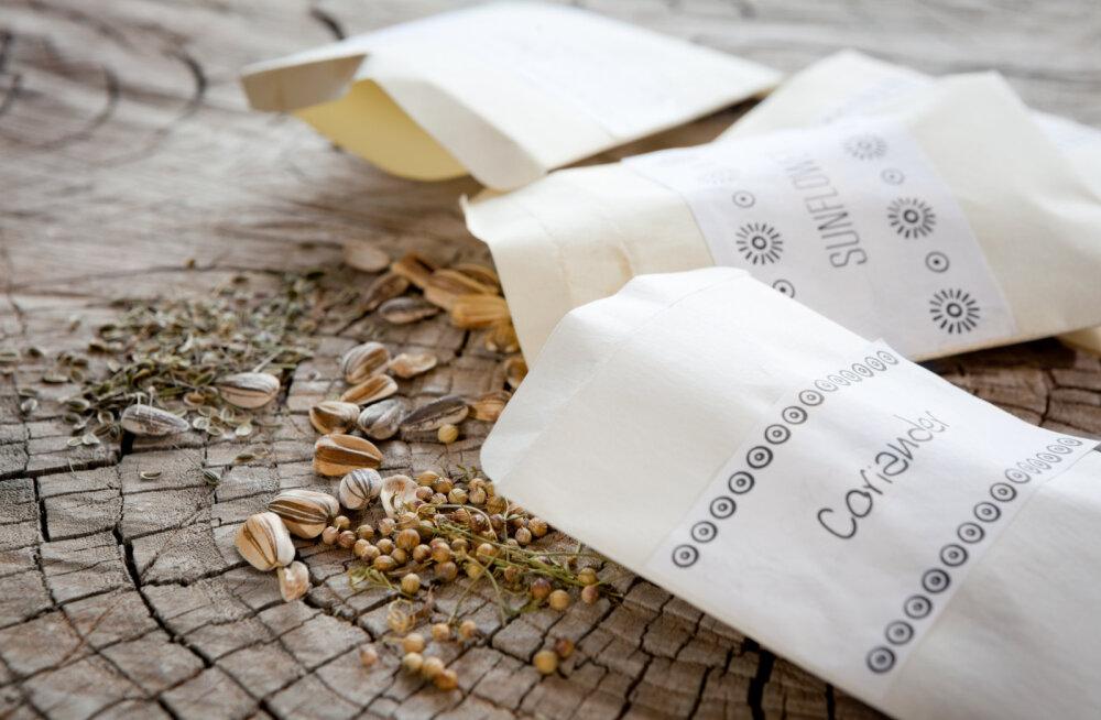 KÜLVIAEG   Kas tead, kuidas seemneid õigesti säilitada?