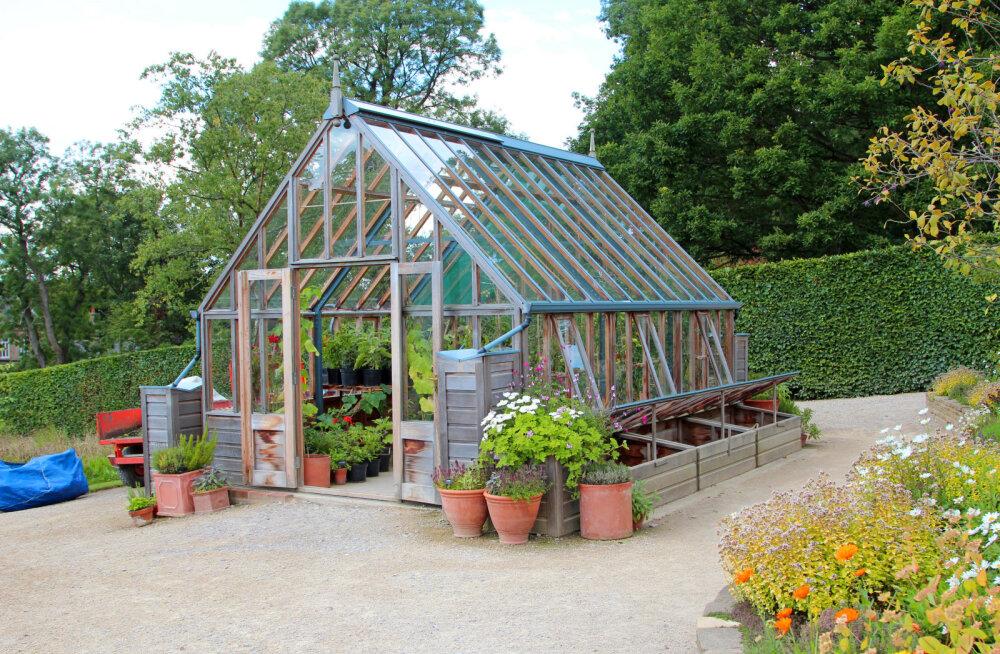 Vaata, kuidas valida kasvuhoonele sobiv asukoht!