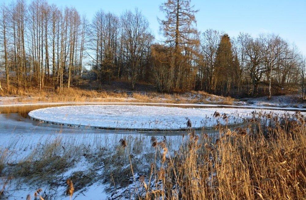 Vigala jõele tekkis jääratas
