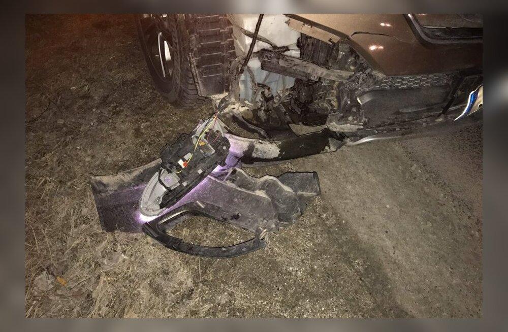 Председатель IRL попал в аварию и насмерть сбил косулю, в этом он винит пятницу 13-е