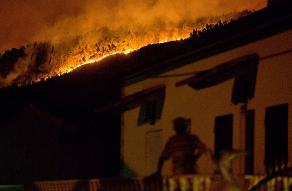 ФОТО и ВИДЕО: В Португалии в лесных пожарах погибли десятки людей