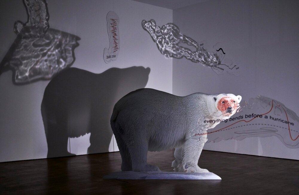 Katja Novitskoval kui arukal noorel kunstnikul on kunstis kuulutada oma sõnum.