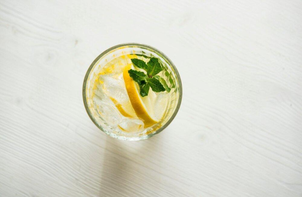 Kolm suhkruvaba limonaadi, millega lapsi suvel rõõmustada!