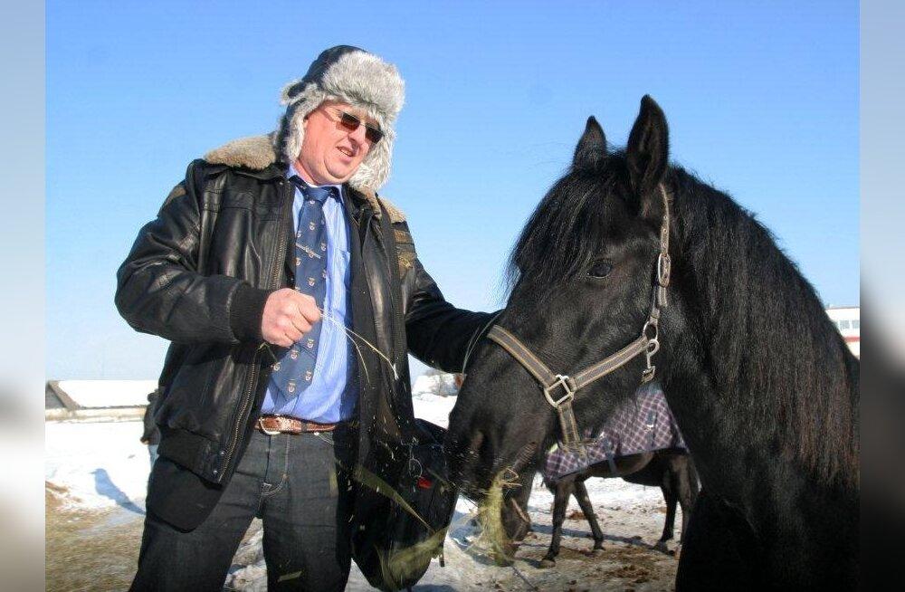 Hollandi hobusekasvataja otsib kadunud Ameerika turule Eestist asendajat