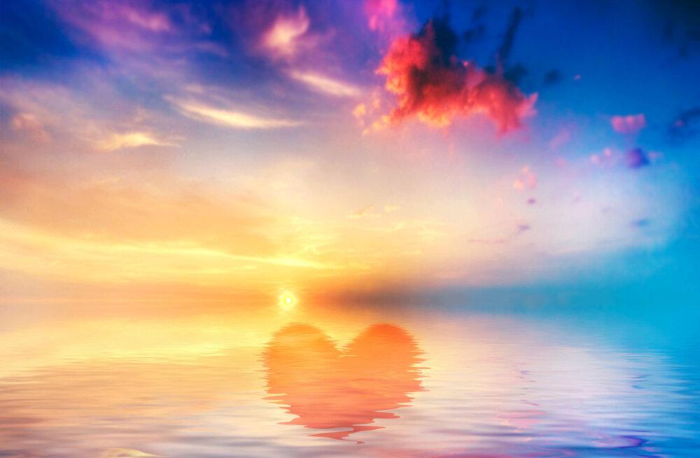 Alkeemia lugemisnurk | Eckhart Tolle: armastus, rõõm ega rahu ei saa puhkeda õide enne, kui inimene pole end mõistuse ikkest vabastanud