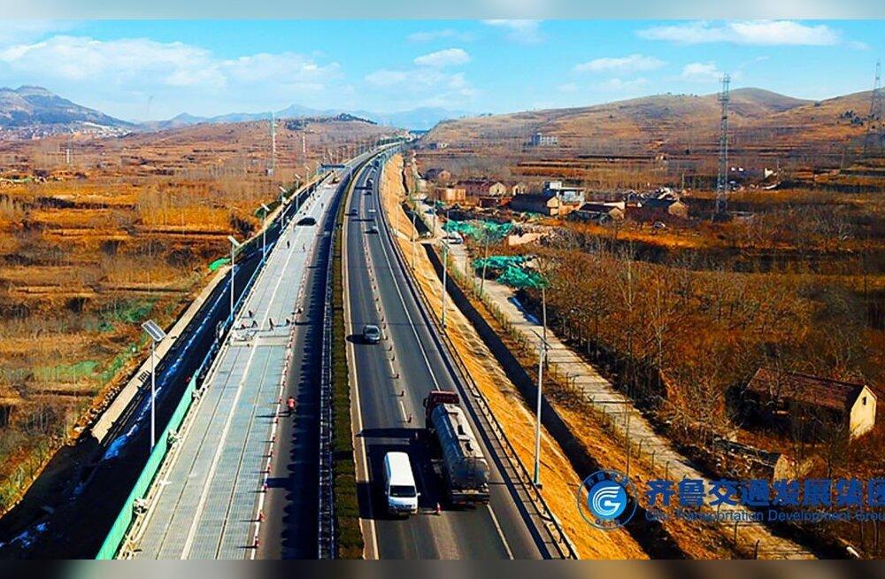 Vargad viisid Hiinas minema tüki maanteest